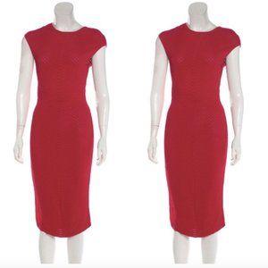 Alexander Mcqueen Hot Pink Textured Midi Dress